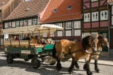 Horse-drawn wagon, Wernigerode